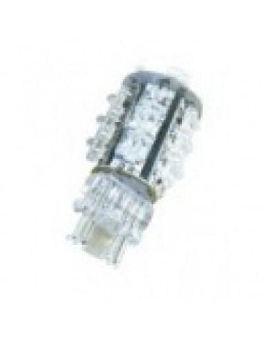 LED Pozitie T20 LD1012